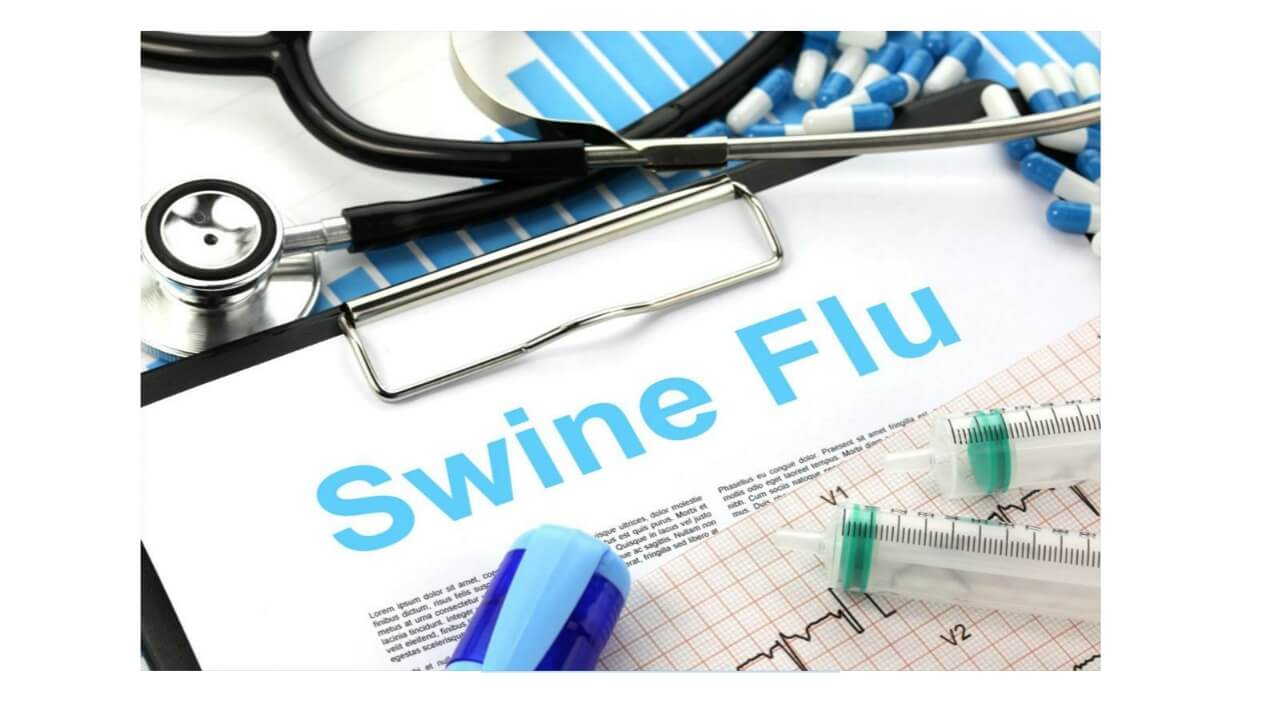 Swine flu 2009 pandemic