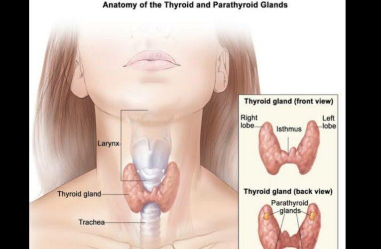 hyperthyroidism level of TSH