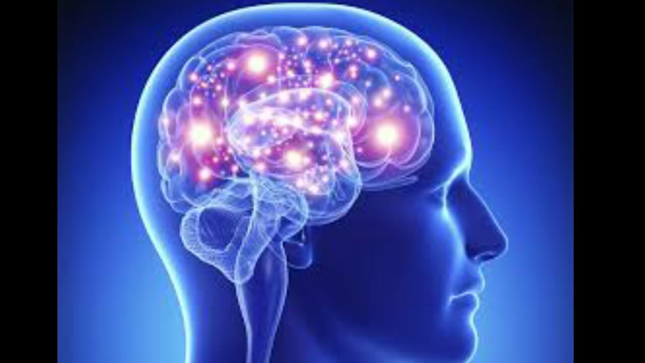 Brain development for children